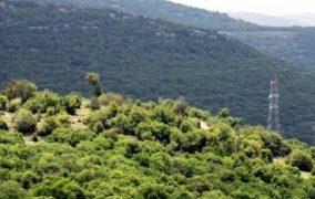 الطريق الملوكي بوابة لجذب الاستثمار في عجلون