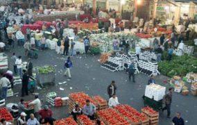 500 طن واردات سوق العارضة للخضار في دير علا