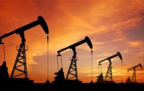 أسعار النفط تهبط